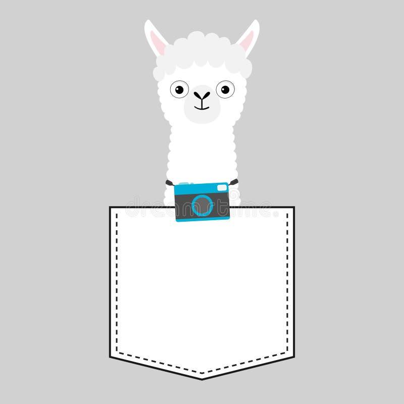 Llama alpaca face head in the pocket. Photo camera. Cute cartoon animals. Kawaii character. Dash line. White and black color. T-. Shirt design. Baby gray royalty free illustration