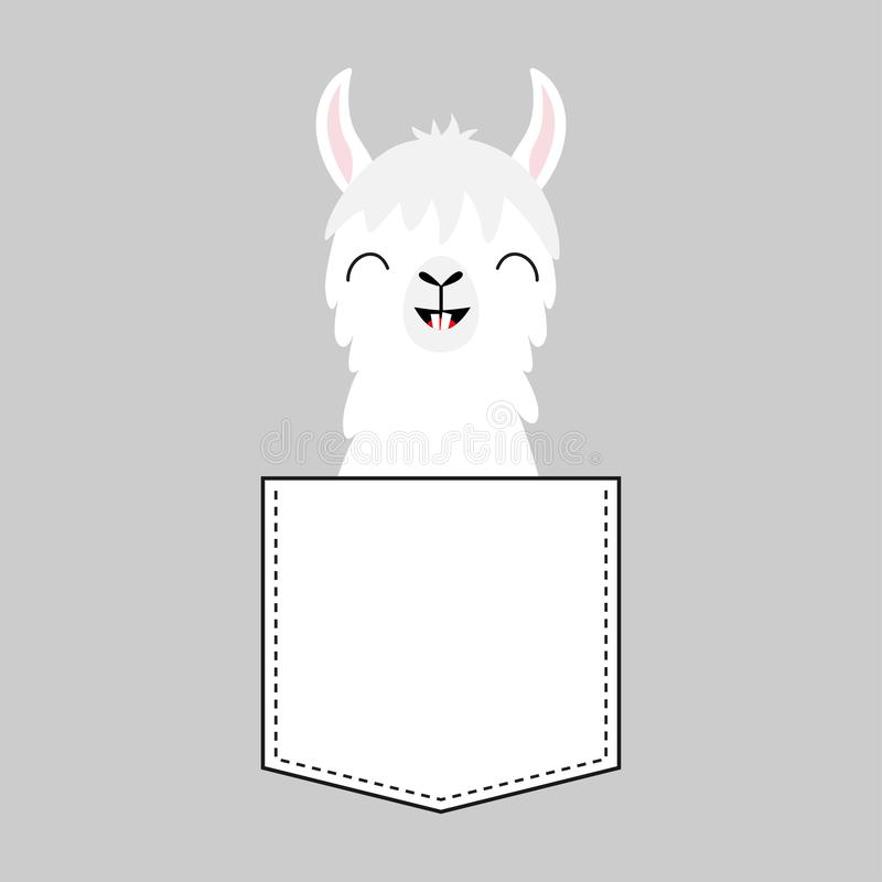 Llama alpaca face head in the pocket. Smiling teeth. Cute cartoon animals. Dash line. Kawaii character. White and black color. T-. Shirt design. Baby gray vector illustration