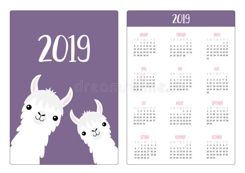 Llama alpaca face neck framily set. Simple pocket calendar layout 2019 new year. Week starts Sunday. Cute cartoon character. royalty free illustration