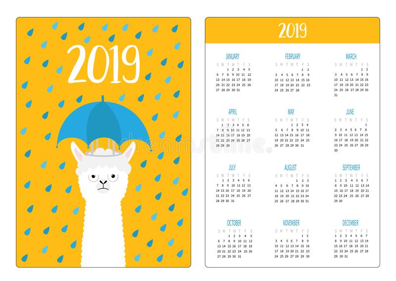Llama alpaca, rain umbrella. Simple pocket calendar layout 2019 new year. Week starts Sunday. Cute cartoon character. Vertical stock illustration