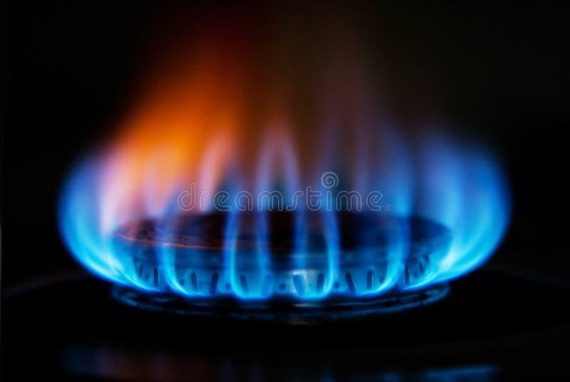 Llama del fuego de gas de la estufa fotografía de archivo