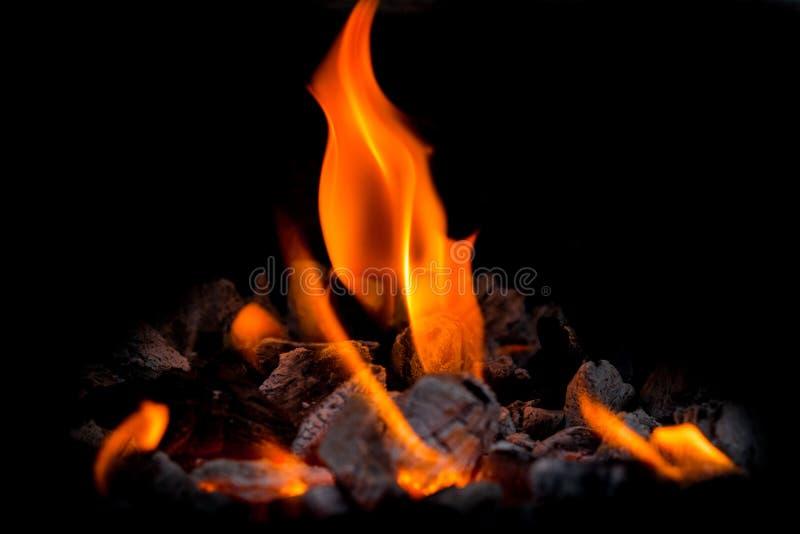Llama, fuego fotografía de archivo libre de regalías