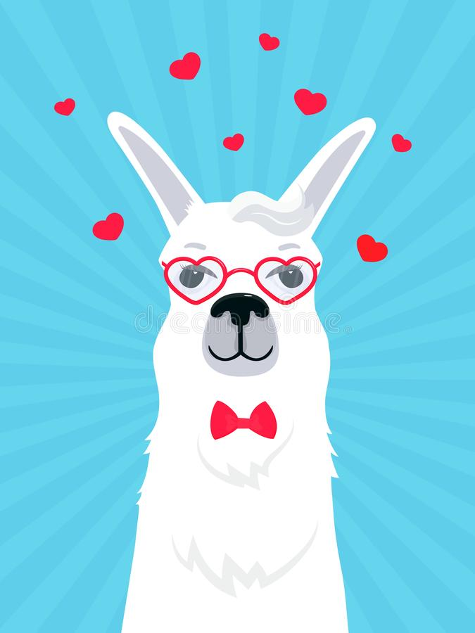 Llama in love in a bow tie and heart-shaped glasses. Valentine`s Day greeting card. Adorable alpaca. Portrait of guanaco stock illustration
