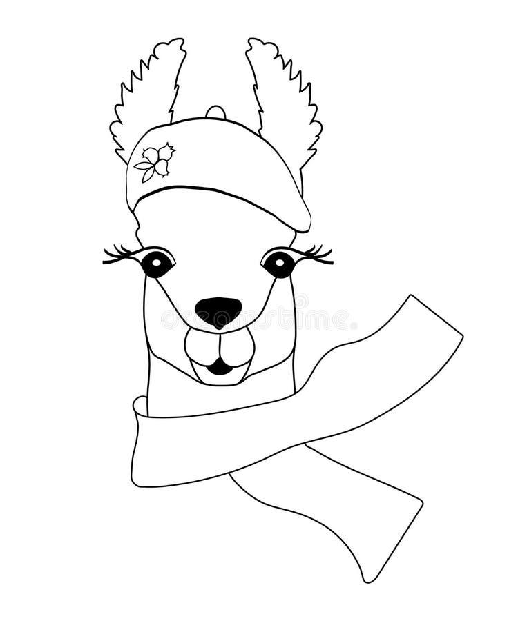 Llama negro-blanca linda en una boina con una bufanda Llama para colorear, impresión infantil para la tela, camiseta, cartel, tar imagenes de archivo