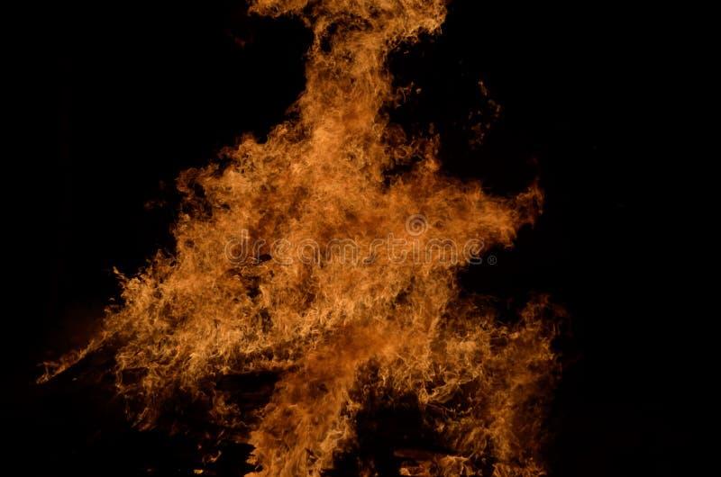 Llamas altas ardientes calientes hermosas de la hoguera en fondo oscuro del invierno fotografía de archivo libre de regalías
