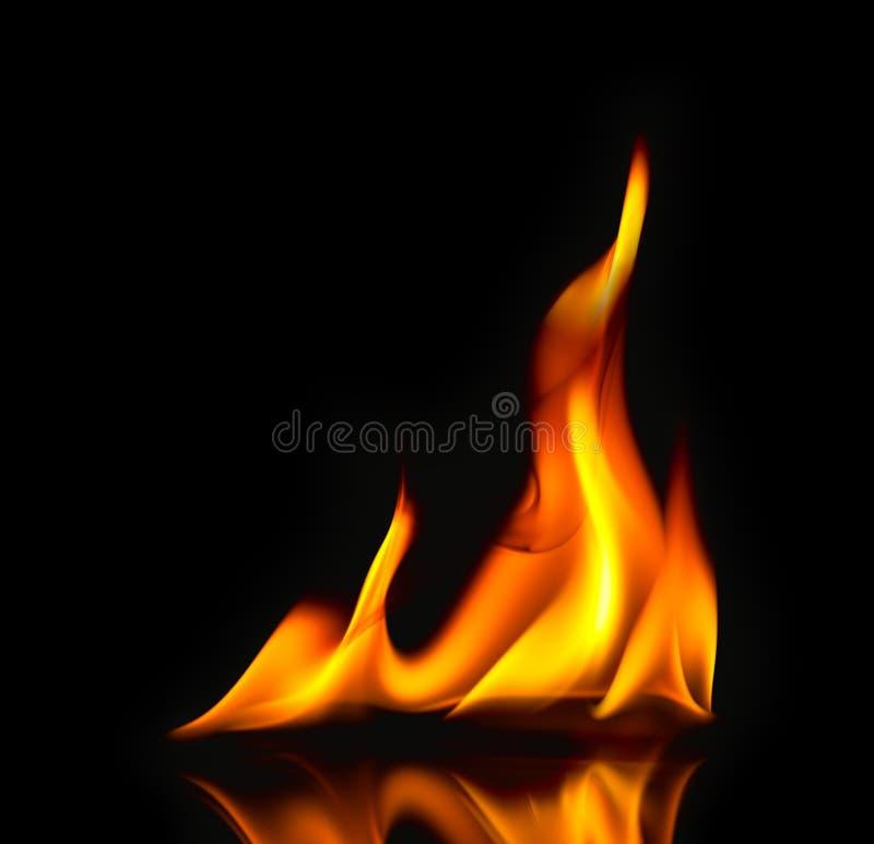 Llamas/con del fuego la reflexión foto de archivo