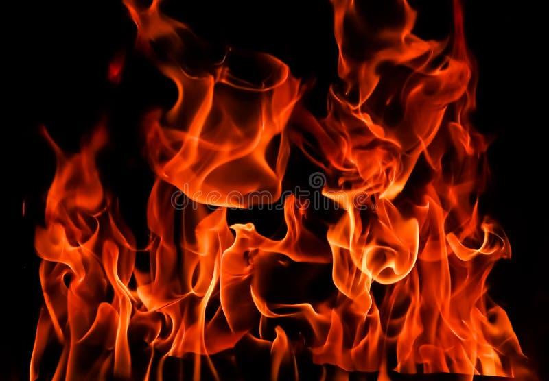 Llamas del fuego en un fondo negro El misterio del fuego imágenes de archivo libres de regalías