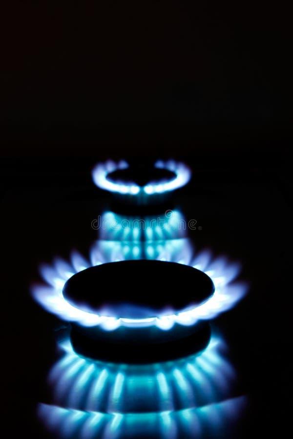 Llamas del gas de la cocina imagen de archivo