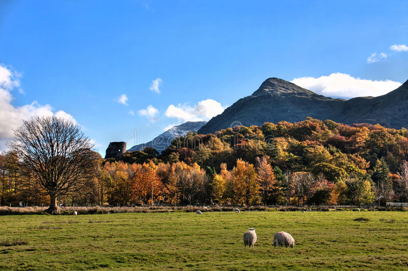 Llanberis In Autumn. And Dolbadarn ruined castle Snowdonia National park stock photography