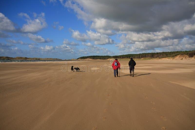 Download On Llanddwyn Island stock photo. Image of wales, cove - 6834050