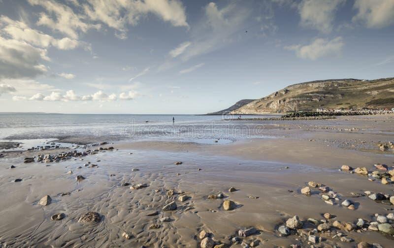 Sandy beach of Llandudno bay at low tide stock photography