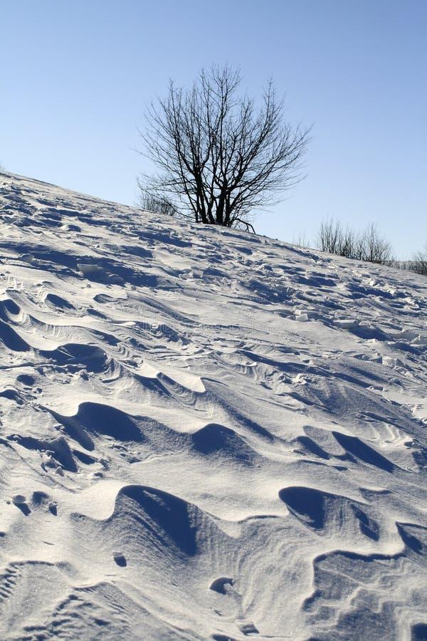 Llano de la nieve soplado por un viento imagen de archivo libre de regalías