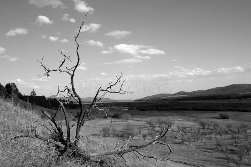 Llano del silencio imagen de archivo