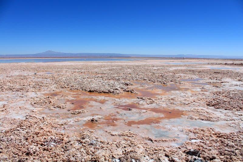 Llanos de la sal con el lago en Chile fotos de archivo