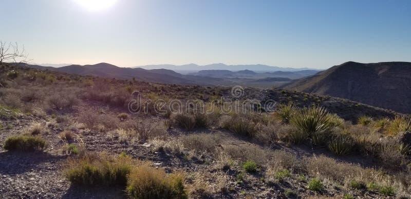 Llanos de Tejas imagen de archivo libre de regalías