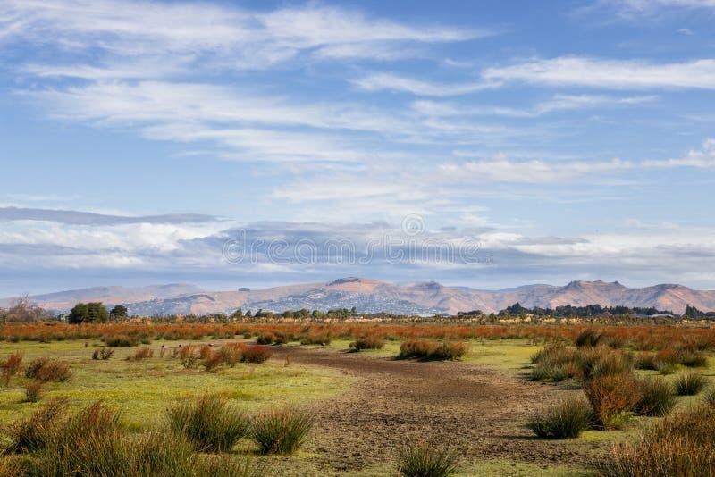 Llanos de Travis Wetland en la última hora de la tarde imagenes de archivo