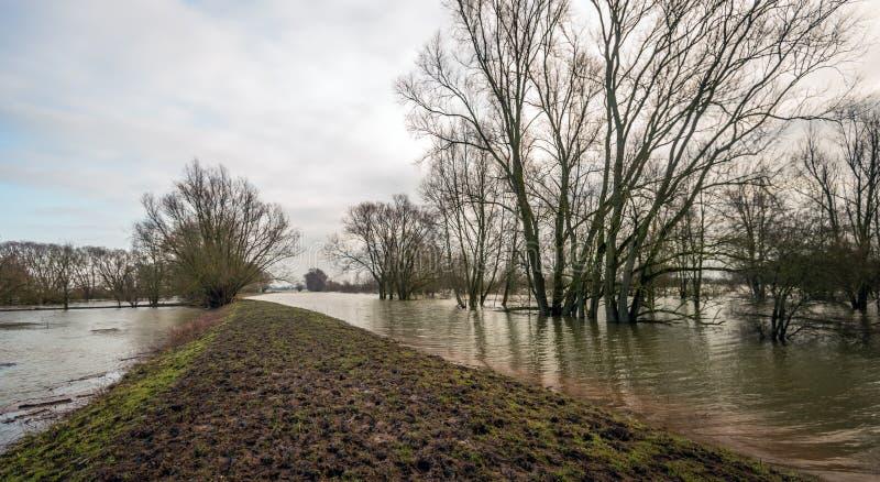 Llanuras de inundación inundadas cerca de un río holandés imagen de archivo