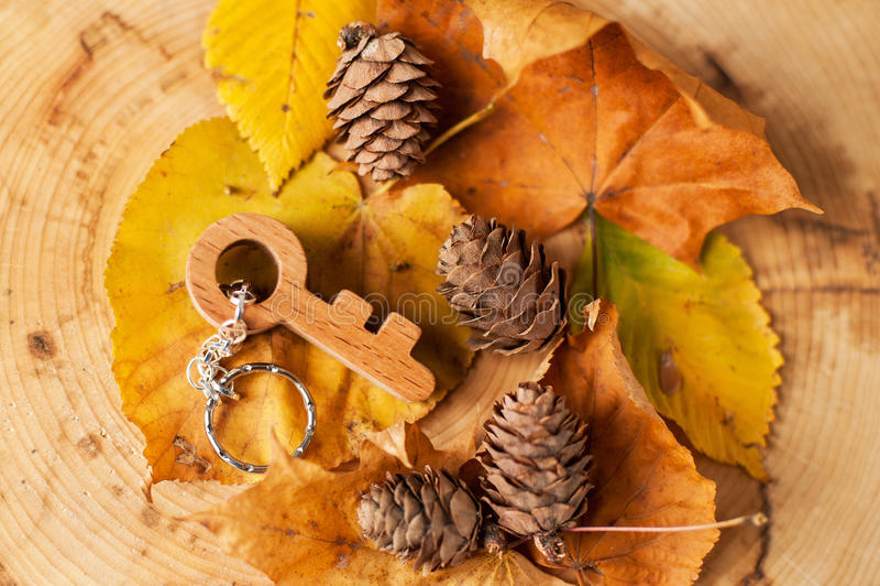 Llave de madera en la madera foto de archivo libre de regalías