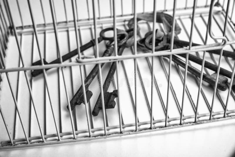 Llaves cerradas en una jaula foto de archivo