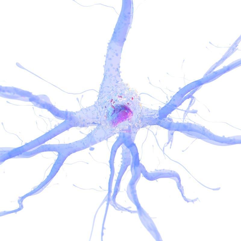Lle cellule nervose royalty illustrazione gratis