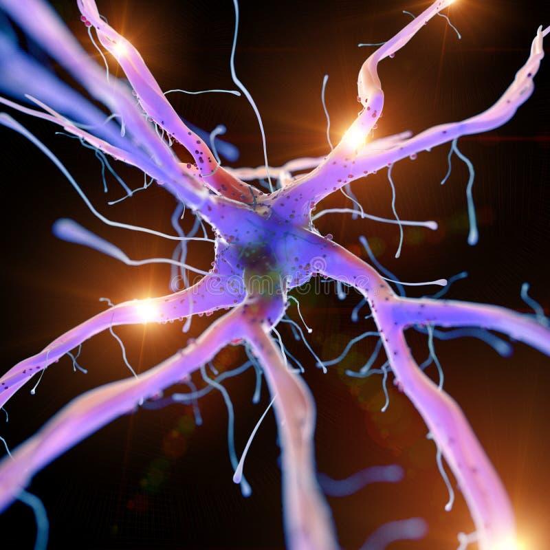 Lle cellule nervose attive royalty illustrazione gratis