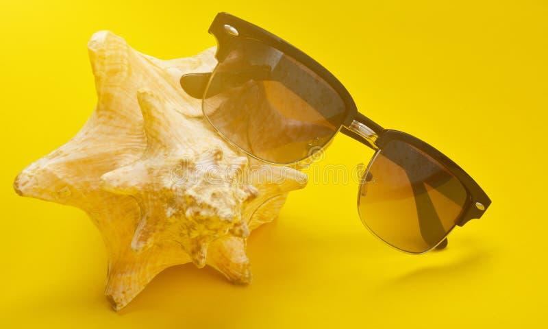 Lle coperture grandi ed occhiali da sole della mussola su un fondo giallo immagini stock libere da diritti