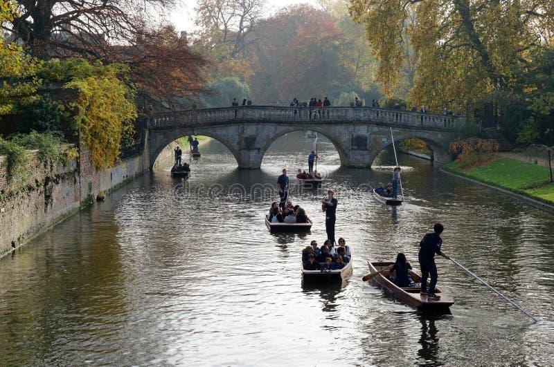Llevando en batea en la leva del río, Cambridge, Reino Unido imagen de archivo
