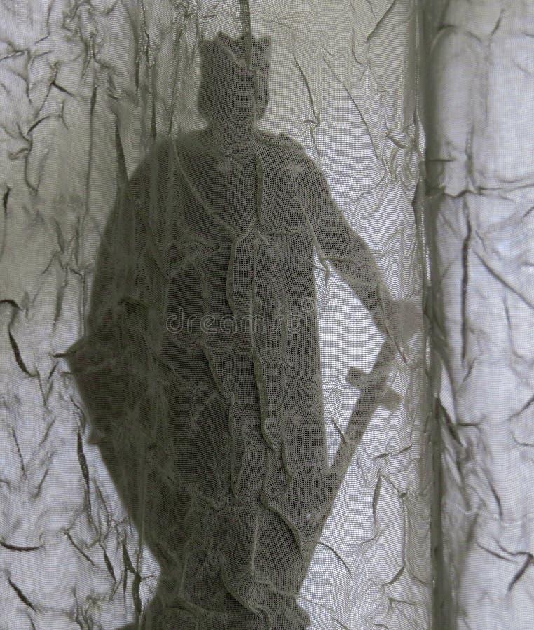 Llewellyn le grande, re di Lingua gallese, siluetta, vista attraverso la mussola copre fotografie stock