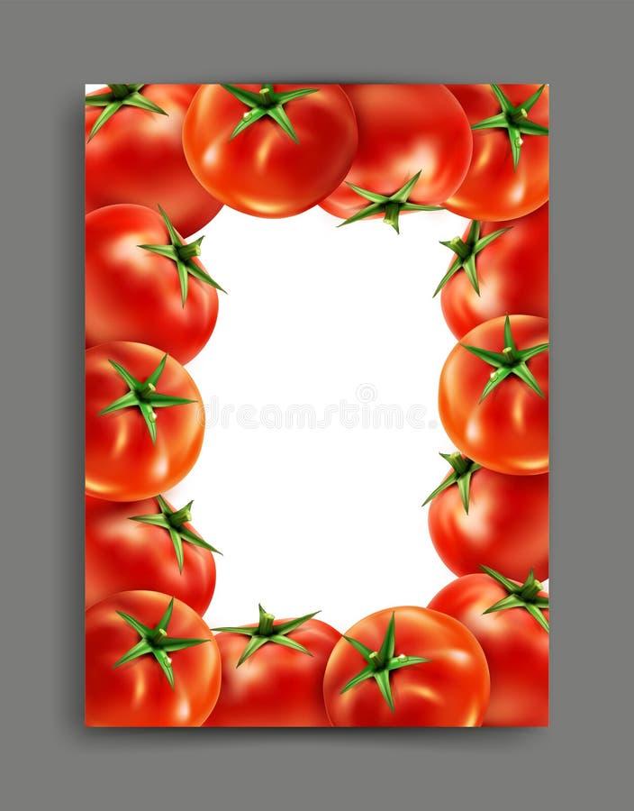Lliustration del vector con los tomates realistas con el marco libre illustration