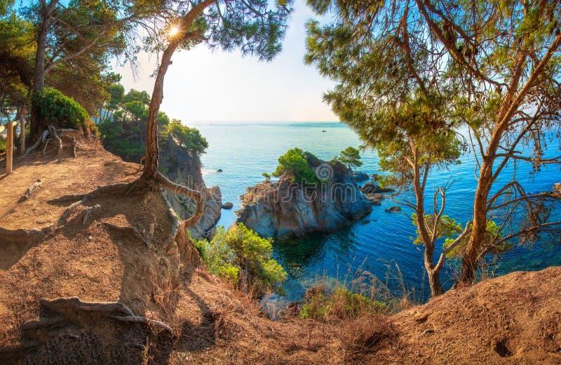 Lloret de marcha, Espa?a Opinión sobre el mar Mediterráneo a través de árboles de pino en Costa Brava Acantilado y rocas en la co imagen de archivo