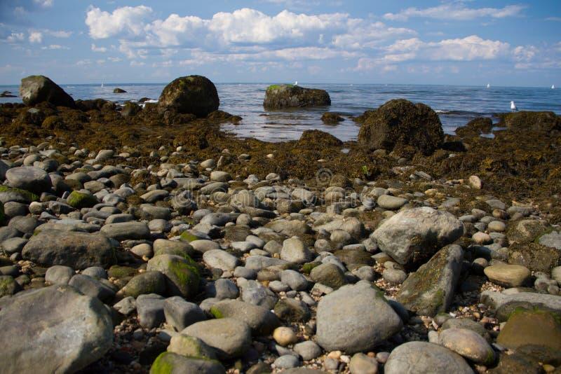 Lloyd Neck Beach lizenzfreies stockfoto