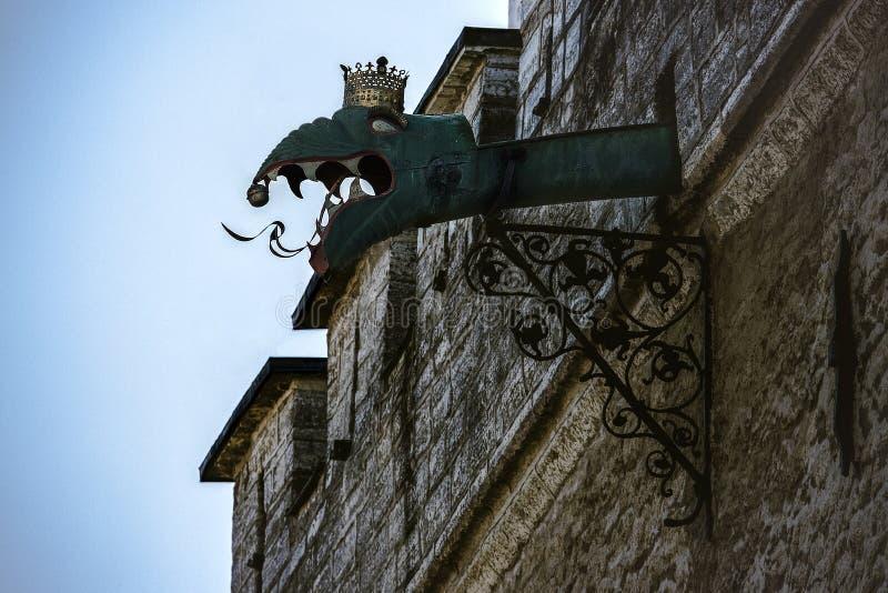 Llueva el canal adornado con la cabeza de la gárgola del dragón en ayuntamiento de Tallinn fotos de archivo libres de regalías
