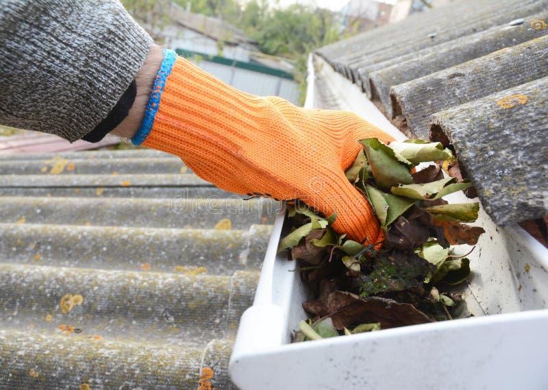 Llueva la limpieza del canal de las hojas en otoño con la mano limpieza del canal Extremidades de la limpieza del canal del tejad foto de archivo