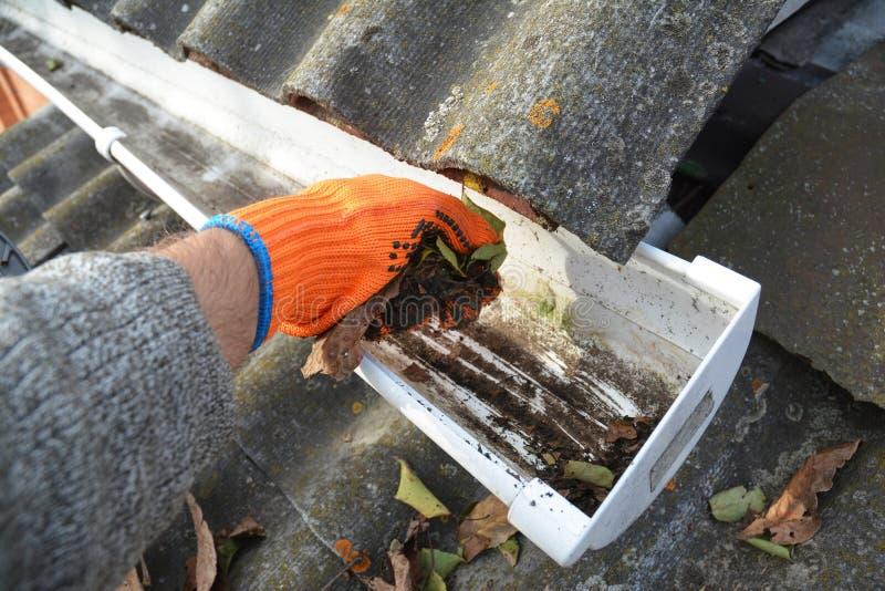 Llueva la limpieza del canal de las hojas en otoño con la mano Extremidades de la limpieza del canal del tejado Limpie sus canale foto de archivo libre de regalías