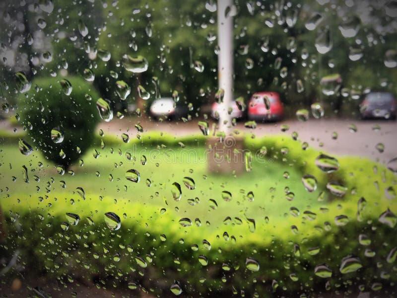 Llueva los descensos, ducha, aguacero, llovizna, ducha de lluvia imagenes de archivo