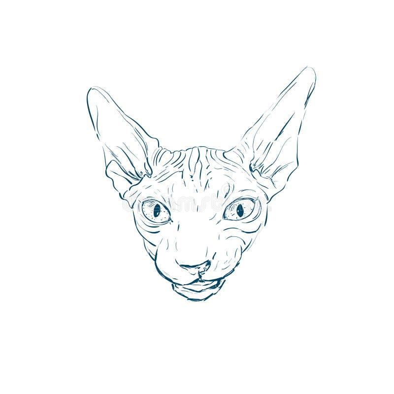 портрет кота R кот Sphynx стоковое изображение иллюстрации
