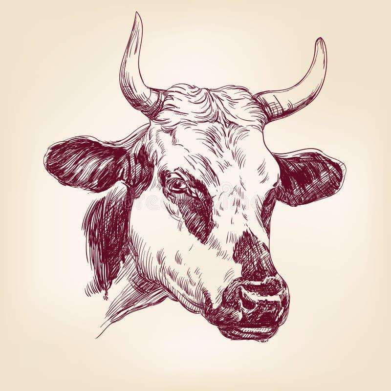 Llustration tirado mão do vetor da vaca ilustração royalty free