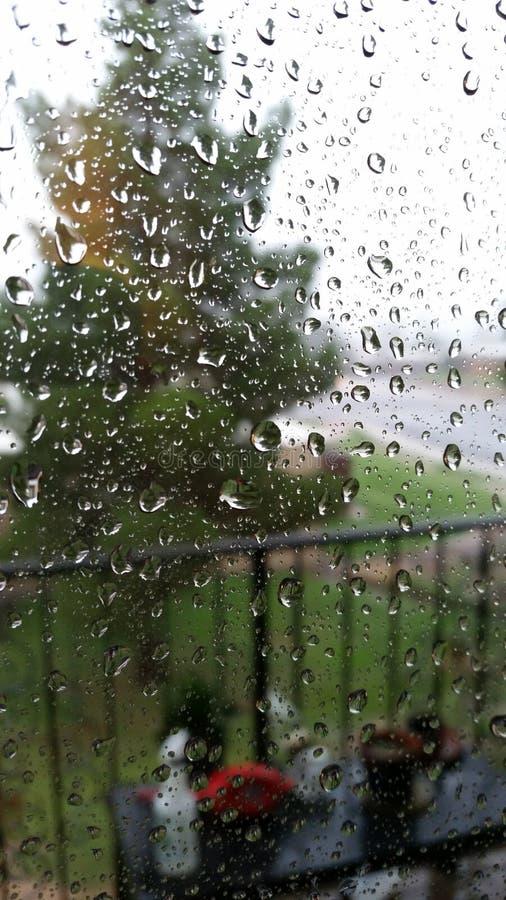 Lluvia de Arizona foto de archivo libre de regalías