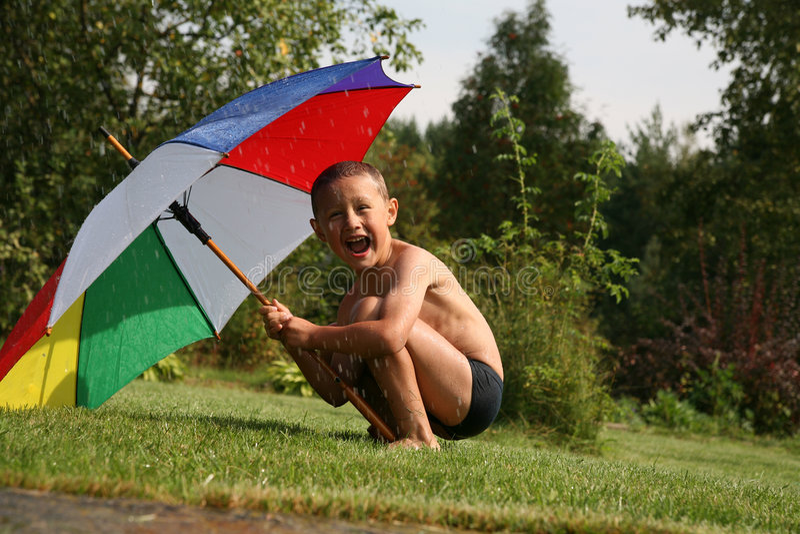 Lluvia del verano imágenes de archivo libres de regalías