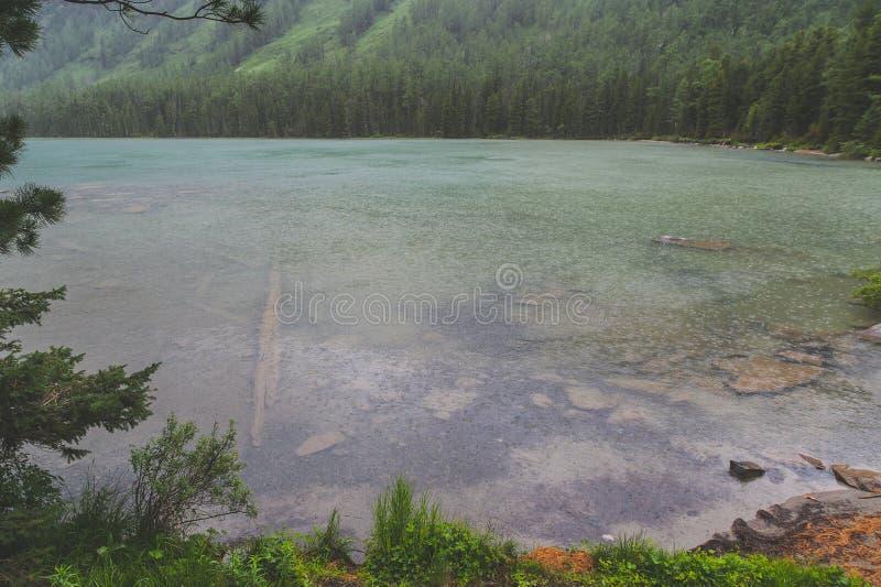 Lluvia del verano en las montañas foto de archivo libre de regalías