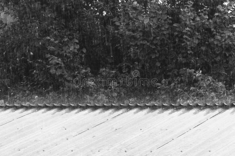 Lluvia del verano o de primavera con el saludo que golpea en el tejado del metal, blanco y negro fotos de archivo