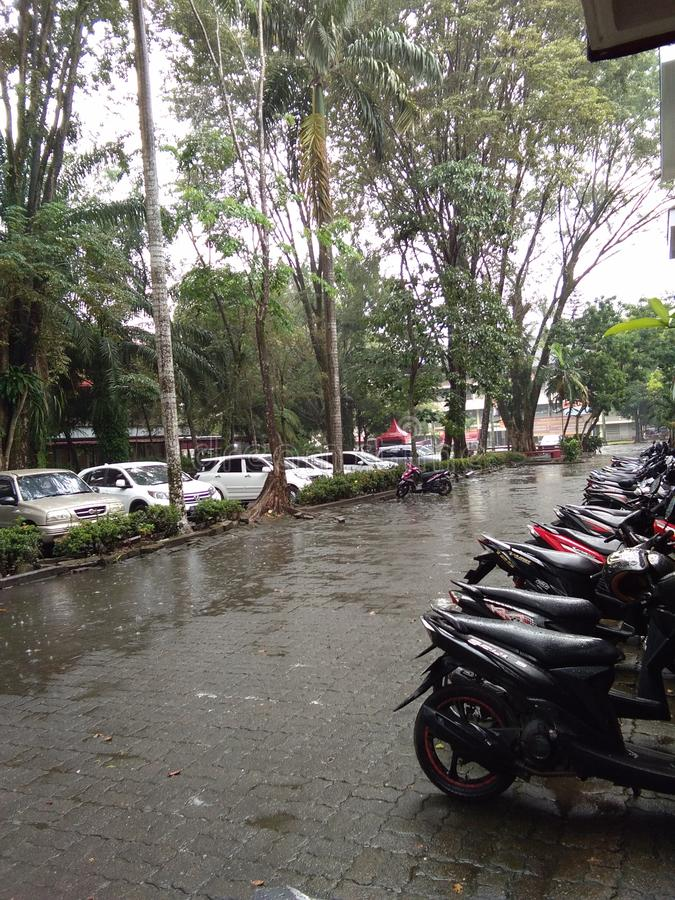 Lluvia en campus imagenes de archivo