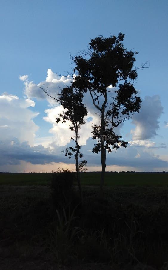 Lluvia/sol imagen de archivo