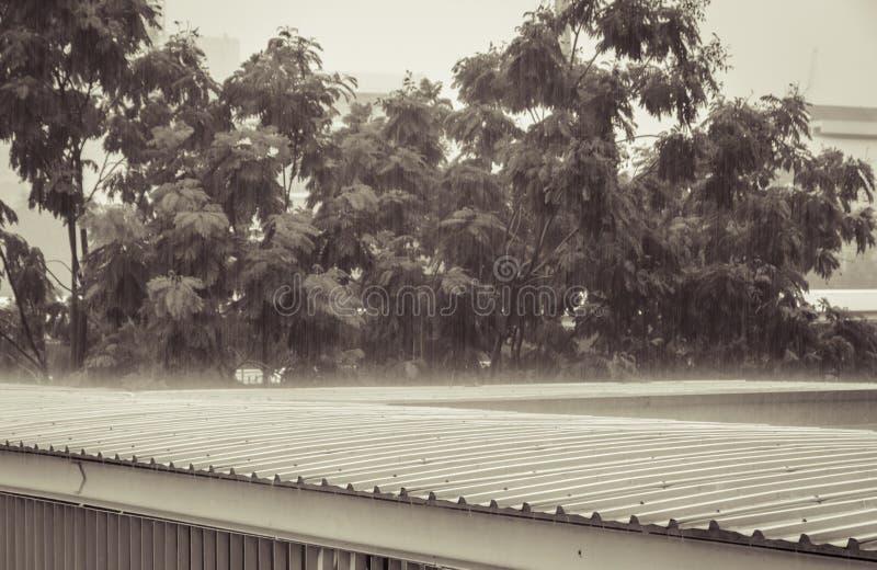 Lluvia torrencial en el tejado fotos de archivo