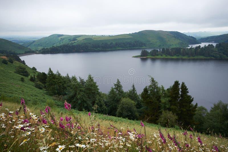 Llyn Clywedog Reservoir cerca de Llanidloes Powys País de Gales imagen de archivo libre de regalías
