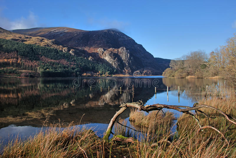 Llyn Cwellyn off the A4085 royalty free stock image