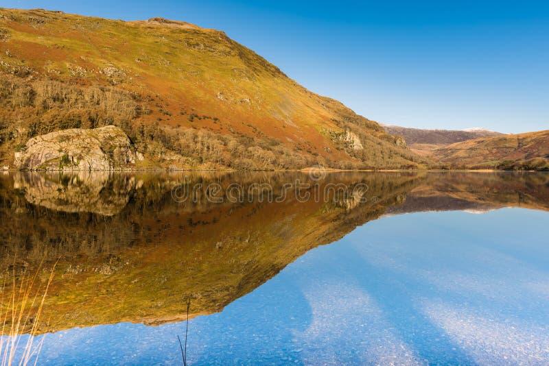 Llyn Gwynant-Reflexion, Nationalpark Snowdonia stockfotos