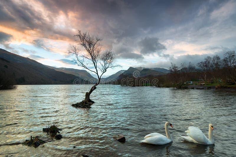 Llyn Padarn i Snowdonia royaltyfri fotografi