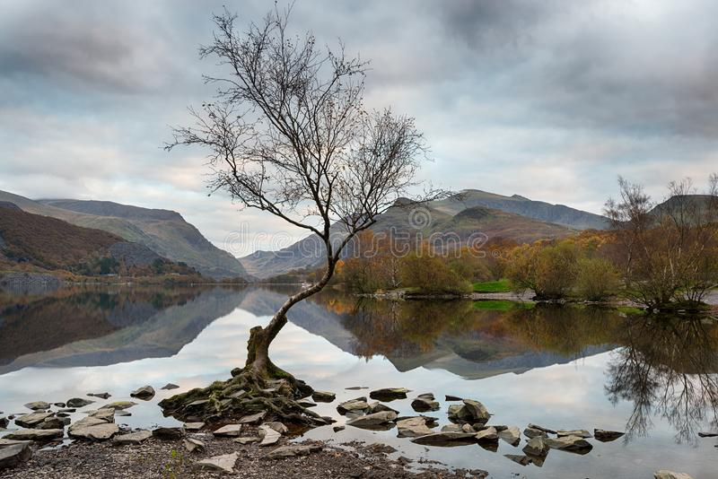 Llyn Padarn in Wales stockfoto