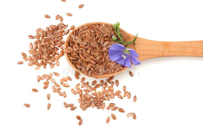 lnów ziarna w drewnianej łyżce z kwiatem na białym tle flaxseed lub linseed zboża Odgórny widok zdjęcie royalty free